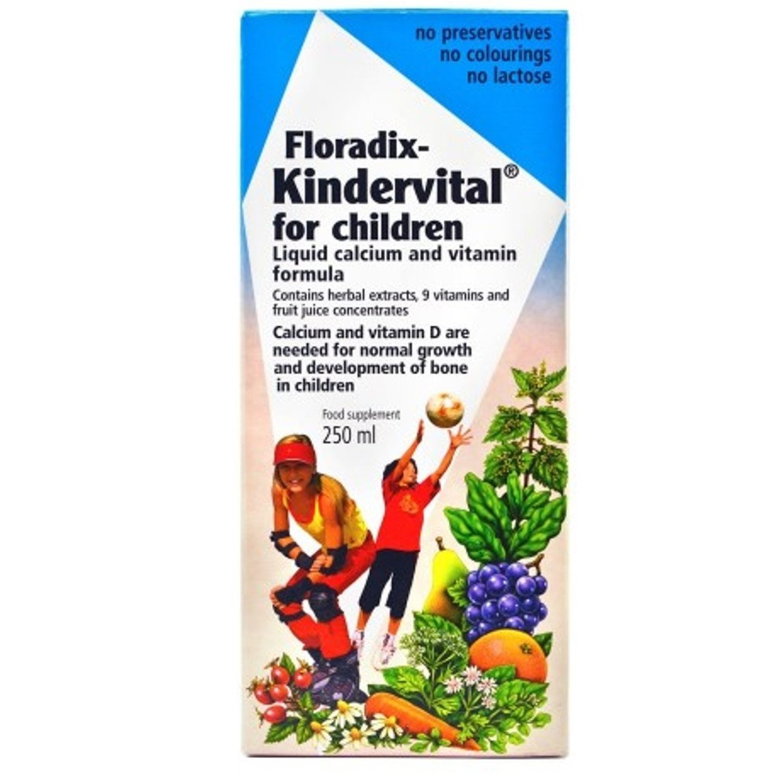 Salus Haus Floradix Kindervital for Children, 250 ml